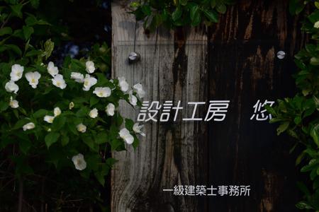 DSC_0829_00001.jpg
