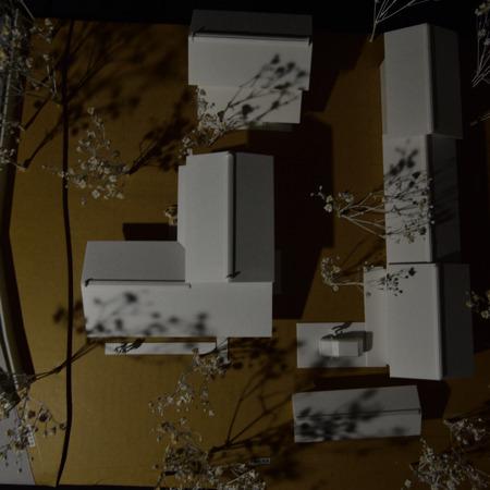 『屋敷林のある家』主屋模型 (17).jpg