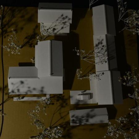 『屋敷林のある家』主屋模型 (8).jpg