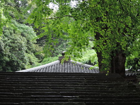 富貴寺20150503.JPG